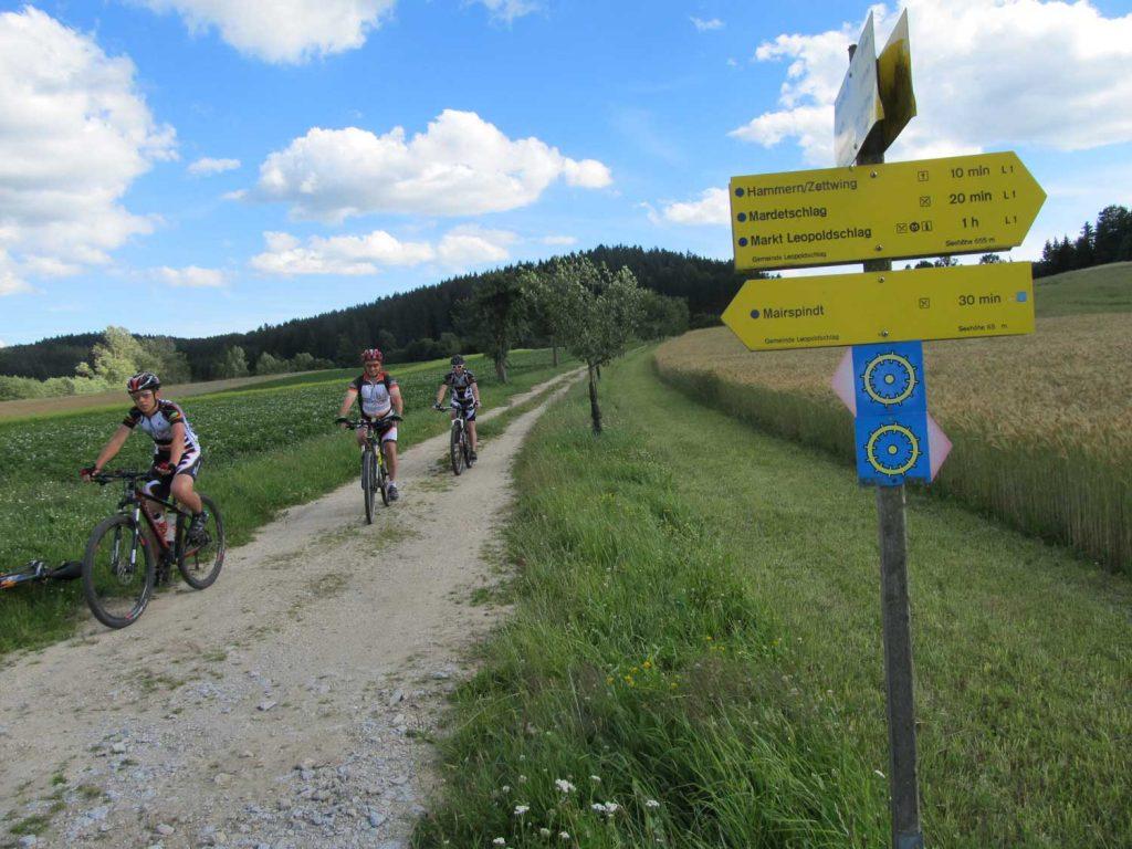 Mountainbiken_Landgasthof_Pammer_4